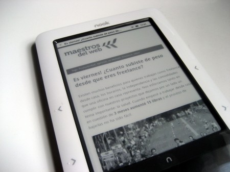 Nook, lector de ebooks.